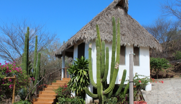 Rancho Dora in Livepuntamita