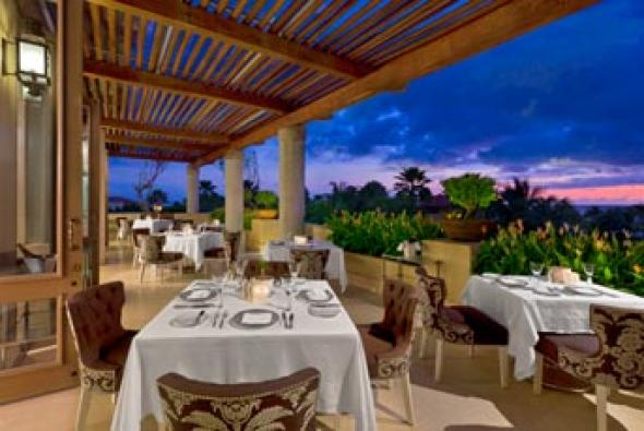 Carolina Restaurant in Livepuntamita