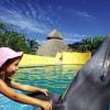 Vallarta Adventure, sharing the culture, wildlife, biodiversity, and natural beauty of Banderas Bay