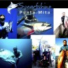 Spearfishing in Punta de Mita