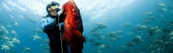 Spearfishing Punta Mita…amazing experience!