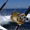 7th Intl Marlin & Tuna Sport Fishing Tournament – Bahia de Banderas, Aug 8-10