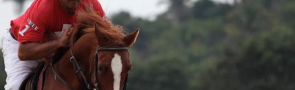 Professional riding lessons now available at Rancho Montalbeña