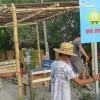 Punta de Mita villages have their first bus stop thanks to Peace Punta de Mita Campeones