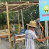 &lt;a href=&quot;http://livepuntamita.com/punta-de-mita-villages-have-their-first-bus-stop-thanks-to-peace-punta-de-mita-campeones/&quot;&gt;&lt;b&gt;Punta de Mita villages have their first bus stop thanks to Peace Punta de Mita Campeones&lt;/b&gt;&lt;/a&gt;&lt;p&gt;<p>For sure you know about Peace Punta de Mita and the extraordinary work they do with the local community through many programs thathelp improve their lives and living conditions. This</p> &lt;/p&gt;