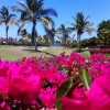 Punta Mita is going Pink for October!