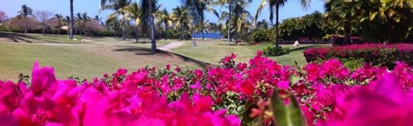 Punta Mita is going Pink for October!
