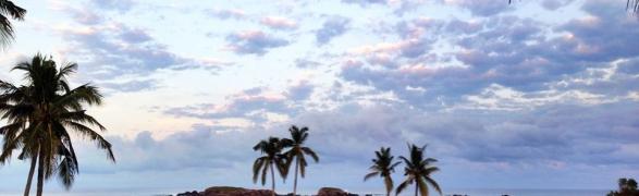 Thanksgiving week in Punta Mita – The Social Calendar!