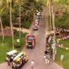 Carnaval Golf Cart Parade & Party! March 1