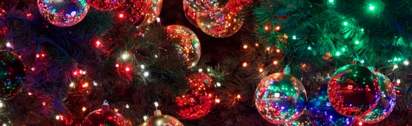 Celebrate Christmas in Punta Mita!