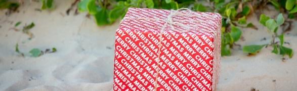 LivePuntaMita Top Holiday Gift Picks