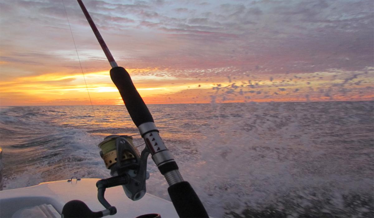Punta de mita activities for Punta mita fishing
