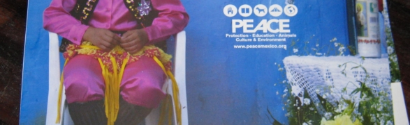Ring in the New Year with the 2011 PEACE Calendar
