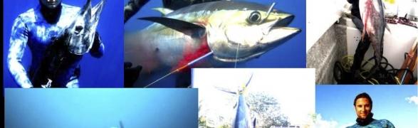 Spearfishing in Punta de Mita