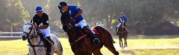 Polo in the Pueblo: Saturday evenings at La Patrona, San Pancho