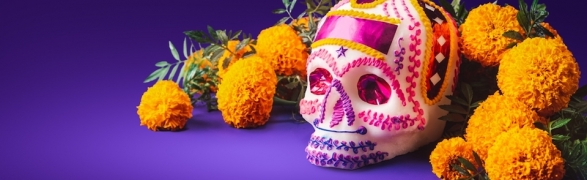 Día de Muertos, all you need to know about this traditional celebration of life!