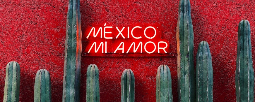 """<a href=""""https://livepuntamita.com/celebrating-the-wonders-of-mexico/""""><b>Celebrating the wonders of Mexico!</b></a><p>For several years now, LivePuntaMita.com dedicates the entire month of September to celebrate Mexico sharing our favorite things about the history, culture, folklore, cuisine, nature, and art of this marvelous</p>"""