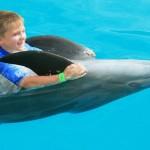 Dolphin Adventure - Vallarta Adventures