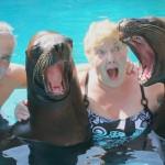 Sea Lion Encounter - Vallarta Adventures